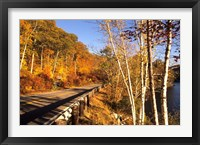 Framed Tranquil Road with Fall Colors in New England