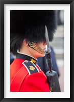 Framed Scots Guard, Buckingham Palace, London, England