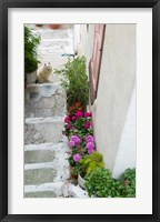 Framed Street Detail, Vathy, Samos, Aegean Islands, Greece