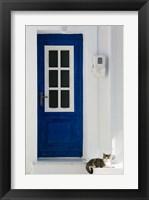 Framed Greece, Aegean Islands, Samos, Door, Cat