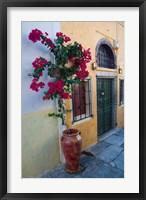 Framed Bougenvillia Vine in Pot, Oia, Santorini, Greece