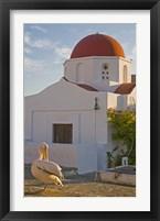 Framed White Pelican Preening, Hora, Mykonos, Greece