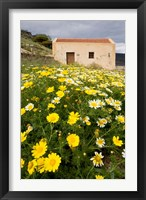 Framed Wildflowers and church of St, Island of Spinalonga, Crete, Greece