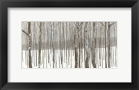 Framed Woods in Winter