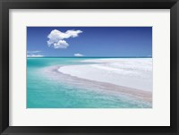 Framed Tropical Simplicity