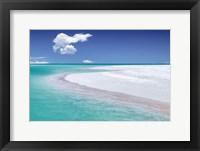 Framed Tropical Simplicity