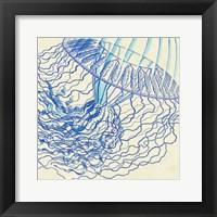 Framed Vintage Jellyfish I