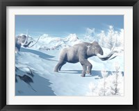 Framed Mammoths Walking Slowly on the Snowy Mountain Against the Wind