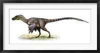 Framed Velociraptor, a Prehistoric Era Dinosaur