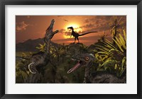 Framed Group of Feathered Carnivorous Velociraptors