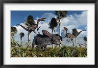 Framed Velociraptors Attack a Lone Protoceratops