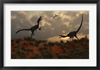 Framed Pair of Velociraptors