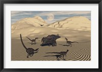 Framed Velociraptors Encircling a  Protoceratops