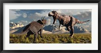 T- Rex and Triceratops meet for a Battle 4 Framed Print