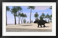 Triceratops Walking along the Shoreline 3 Framed Print