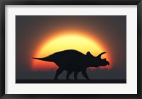 Framed Silhouetted Triceratops strolling Past a Setting Sun