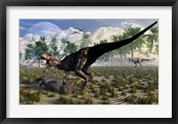 Tyrannosaurus Rex Guards its meal of a Juvenile Triceratops Framed Print