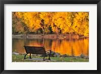 Framed Fall Glow