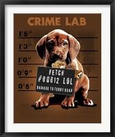 Crime Lab Framed Print