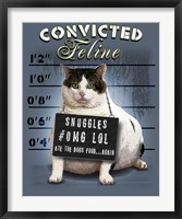 Convicted Feline Framed Print