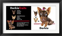 Dorkie Traits Framed Print