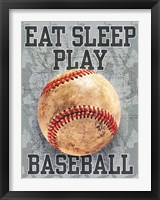 Framed Eat Sleep Play Baseball
