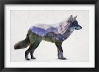 Framed Rocky Mountain Grey Wolf