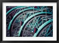 Framed Bicycle Line Up 2