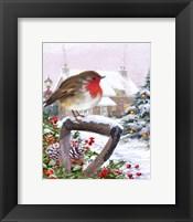 Framed Robin 1