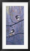 Framed Pair of Chickadees