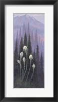 Framed Beargrass