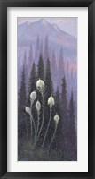 Framed Beargrass