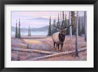 Framed Meadowsong