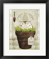 Framed Herb Pot Thyme