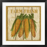 Framed Farm Fresh Corn