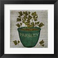 Framed Herb Parsley