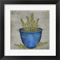 Herb Rosemary Framed Print