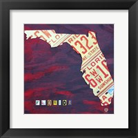 Framed Florida License Plate