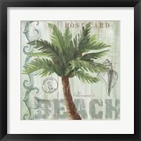 Palmaceae I Framed Print