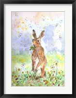 Framed Hare Today