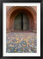 Framed Flower petals, St Anne's Church, Vilnius, Lithuania