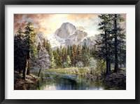 Framed Natures Wonderland