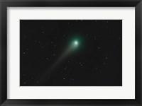 Framed Comet Holmes