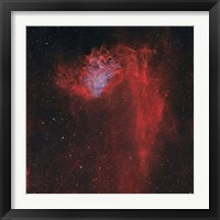 Framed Flaming Star Nebula I