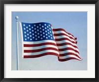 Framed American Flag 3