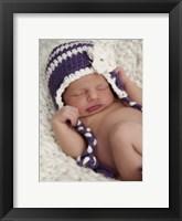 Baby Flower Blues Framed Print