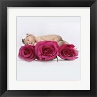 Beckstrand Becki  On Three Roses Framed Print