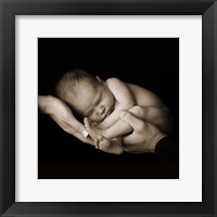 Baby Curled In Hands Framed Print