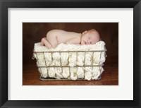 Baby In Knit Basket White Framed Print