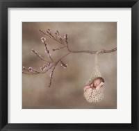 Baby In Beige Knit Hammock Framed Print